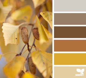 Autumn Colour Inspiration