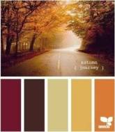 Autumn Colour Palette